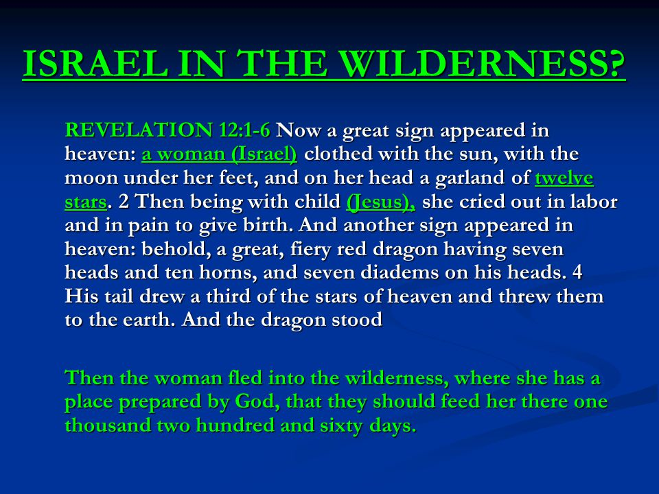 ISRAEL IN THE WILDERNESS.