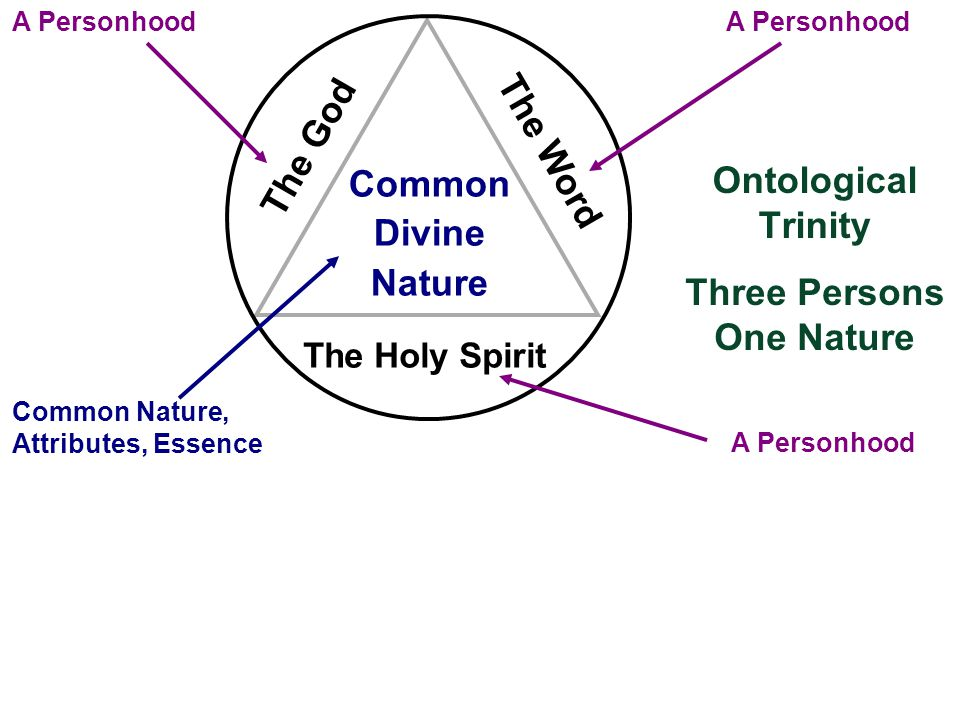 Ontological Trinity Common Divine Nature The God The Word The Holy Spirit A Personhood Common Nature, Attributes, Essence Three Persons One Nature
