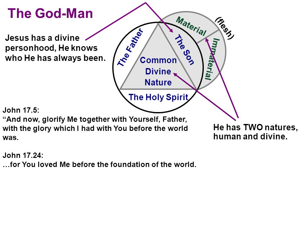 Material Immaterial (flesh) The Holy Spirit The Son The Father Common Divine Nature He has TWO natures, human and divine.
