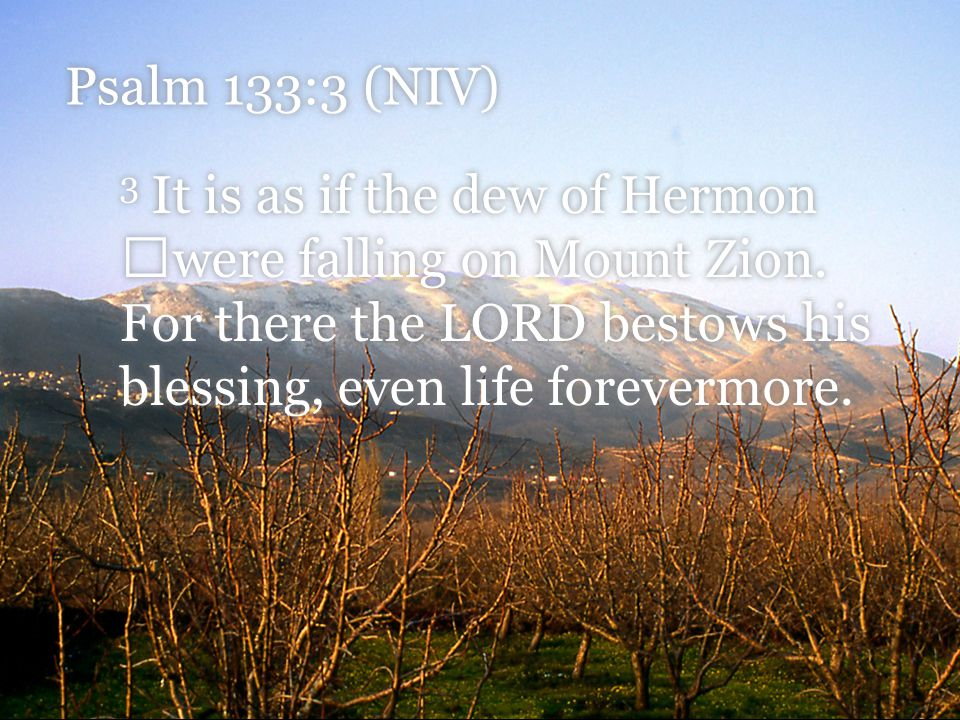 Psalm 133:3 (NIV) 3 It is as if the dew of Hermon were falling on Mount Zion. For there the LORD bestows his blessing, even life forevermore.