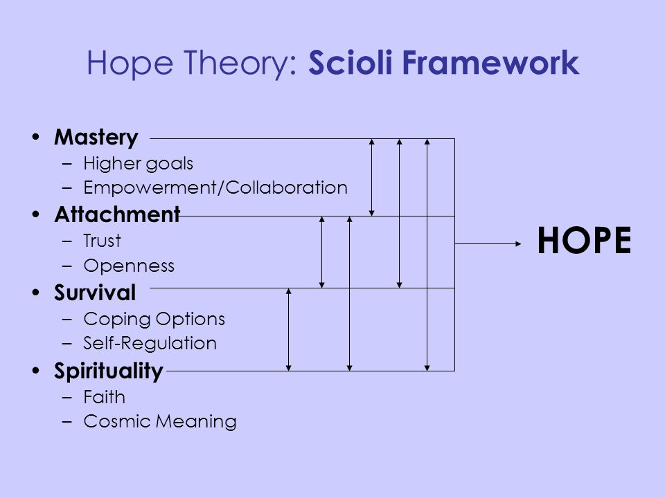 Hope Theory: Scioli Framework Mastery –Higher goals –Empowerment/Collaboration Attachment –Trust –Openness Survival –Coping Options –Self-Regulation S