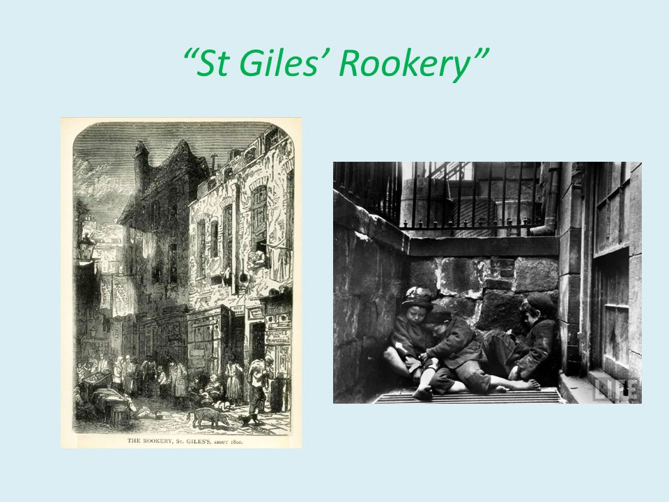 St Giles' Rookery