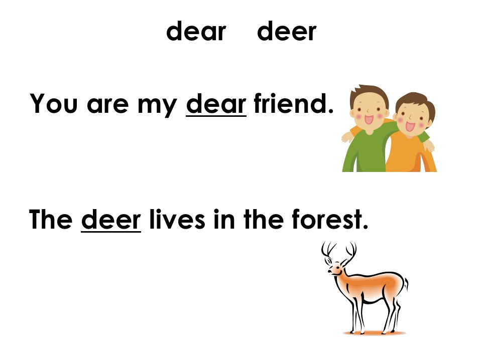 dear deer You are my dear friend. The deer lives in the forest.