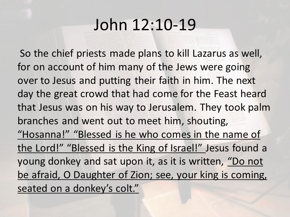John 12:10-19 So the chief priests made plans to kill Lazarus as well, for on account of him many of the Jews were going over to Jesus and putting the