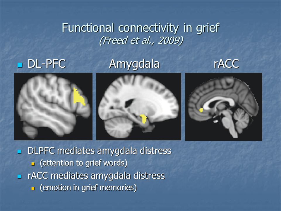 Functional connectivity in grief (Freed et al., 2009) DL-PFC AmygdalarACC DL-PFC AmygdalarACC DLPFC mediates amygdala distress DLPFC mediates amygdala distress (attention to grief words) (attention to grief words) rACC mediates amygdala distress rACC mediates amygdala distress (emotion in grief memories) (emotion in grief memories)