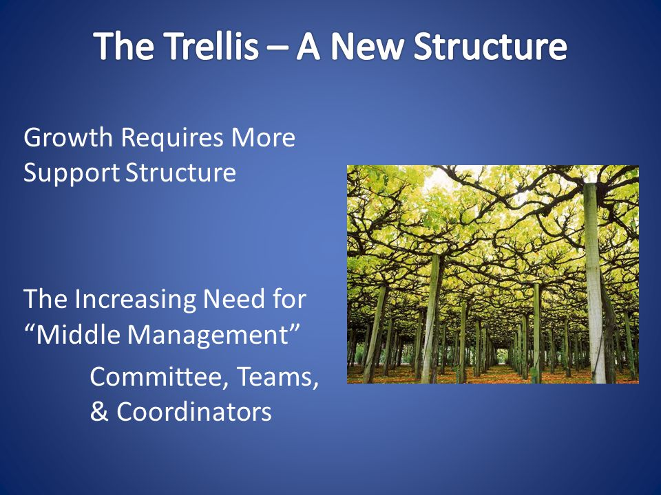 Growth Requires More Support Structure The Increasing Need for Middle Management Committee, Teams, & Coordinators