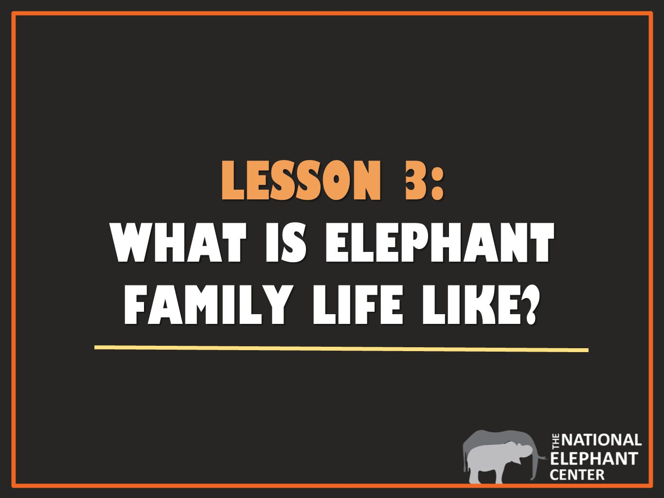 LESSON 3: WHAT IS ELEPHANT FAMILY LIFE LIKE