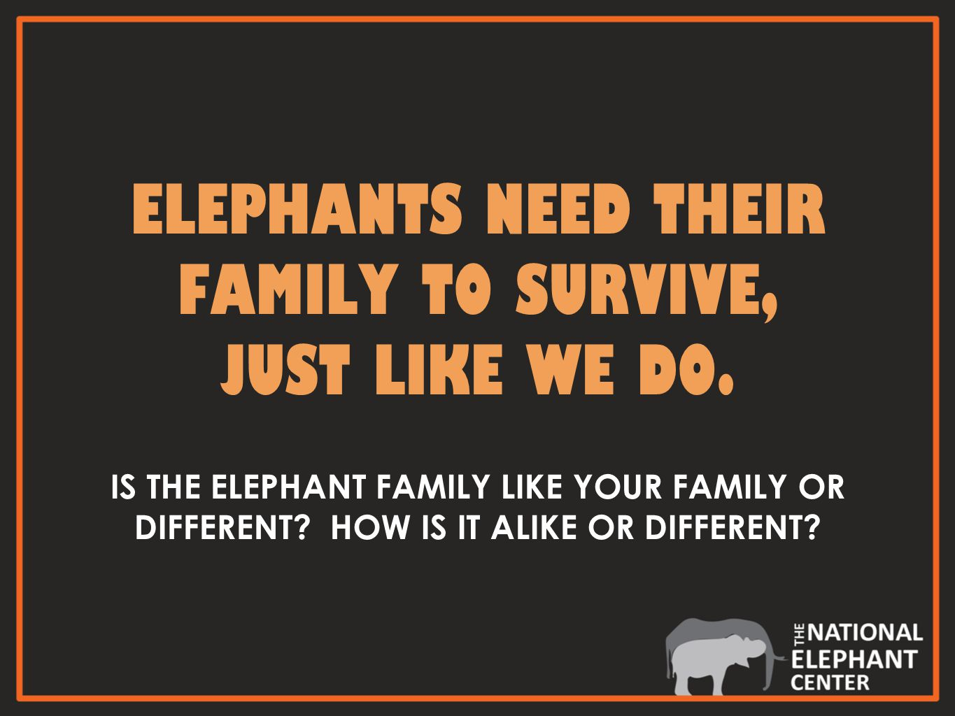 IS THE ELEPHANT FAMILY LIKE YOUR FAMILY OR DIFFERENT.