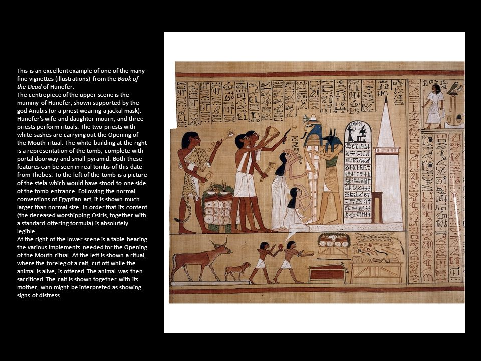 This is an excellent example of one of the many fine vignettes (illustrations) from the Book of the Dead of Hunefer.