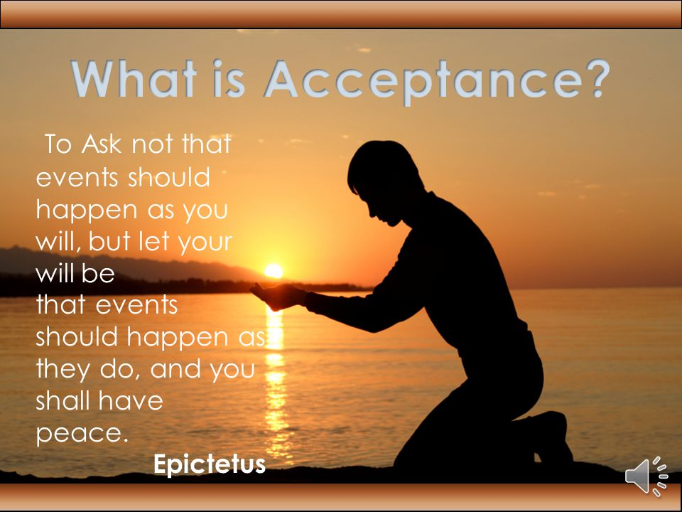Acceptance W rap yourself up in your cocoon and begin your journey to transition