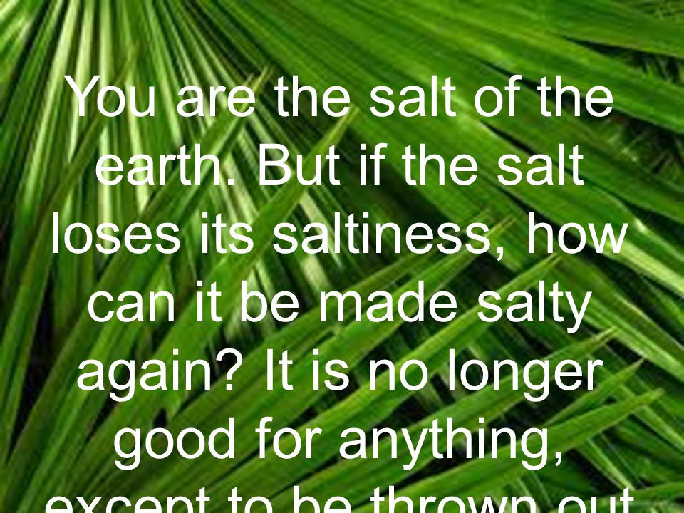 You are the salt of the earth. But if the salt loses its saltiness, how can it be made salty again.