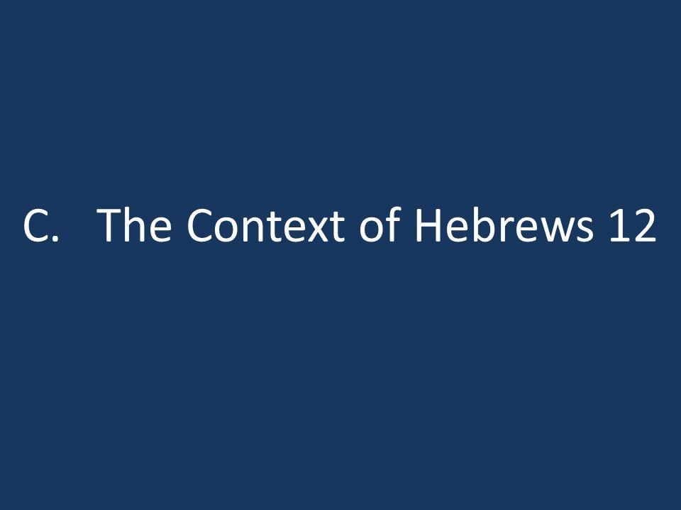 C. The Context of Hebrews 12