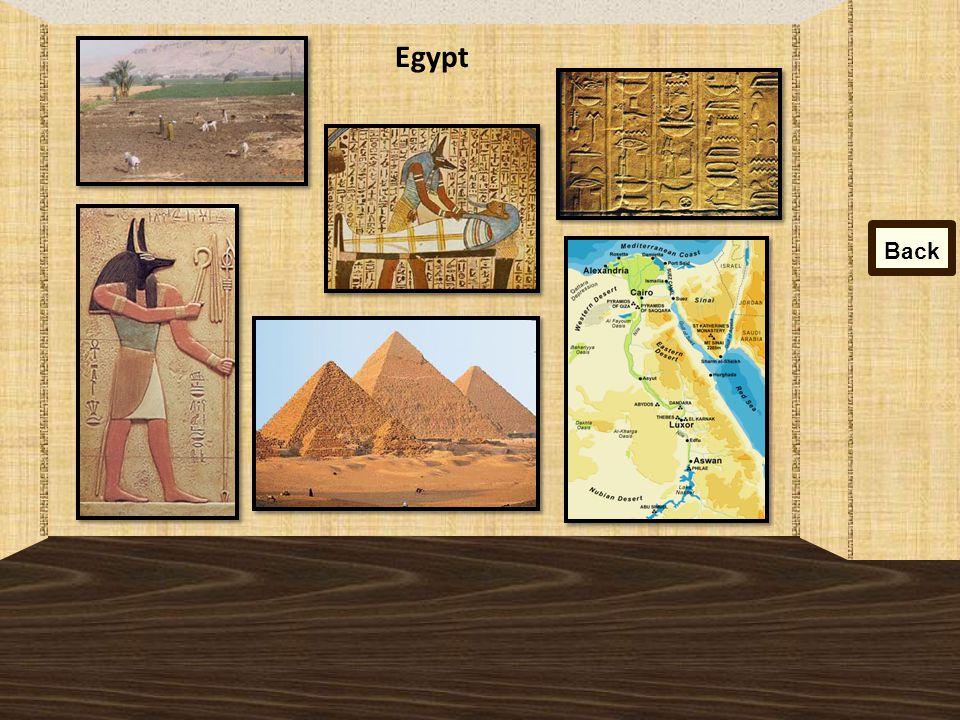 Egypt Back