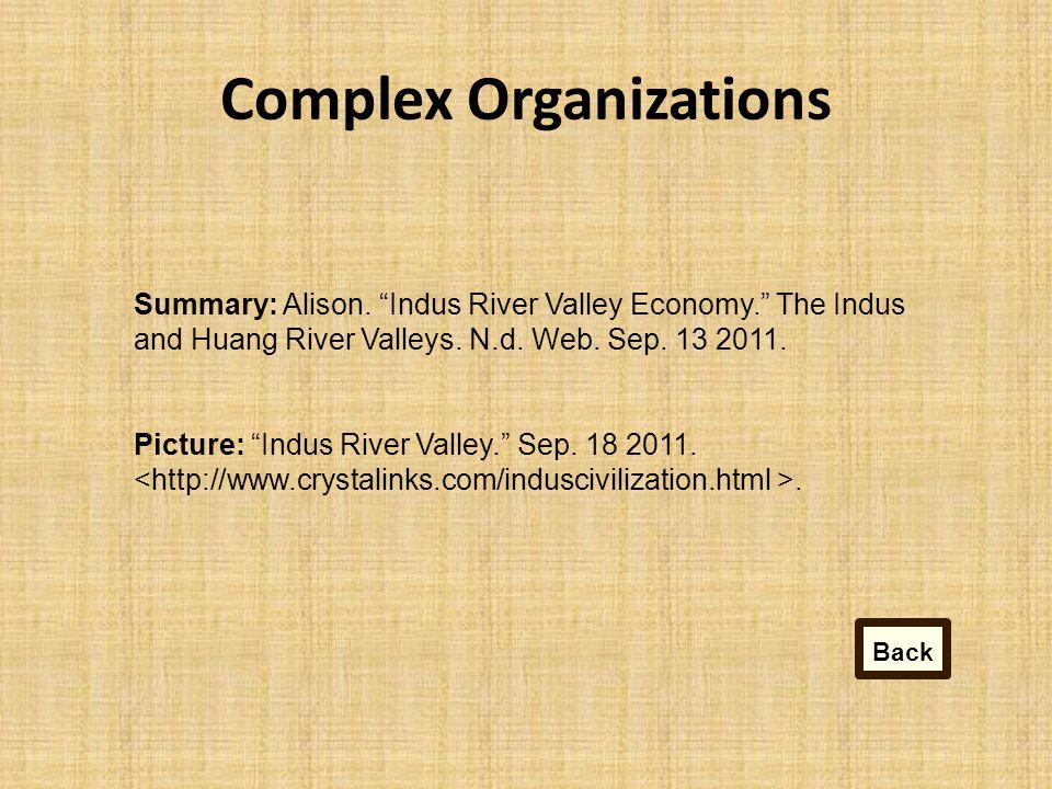 Complex Organizations Summary: Alison.