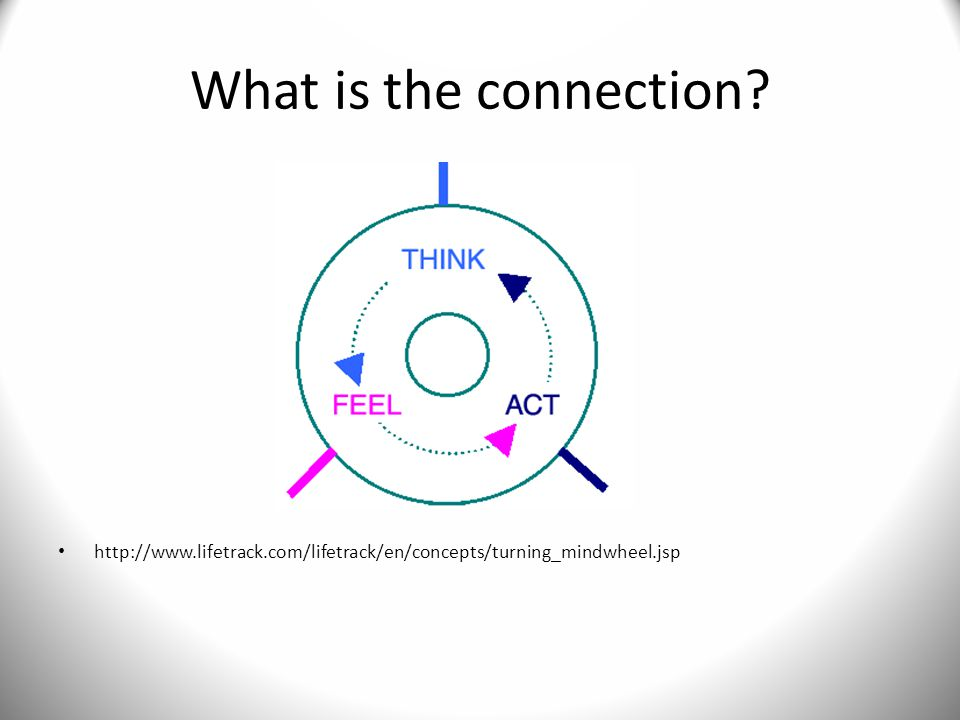 What is the connection http://www.lifetrack.com/lifetrack/en/concepts/turning_mindwheel.jsp