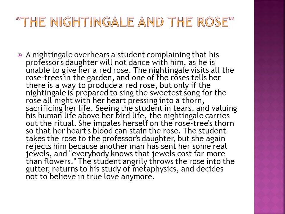 A nightingale overhears a student complaining that his professor s daughter will not dance with him, as he is unable to give her a red rose.