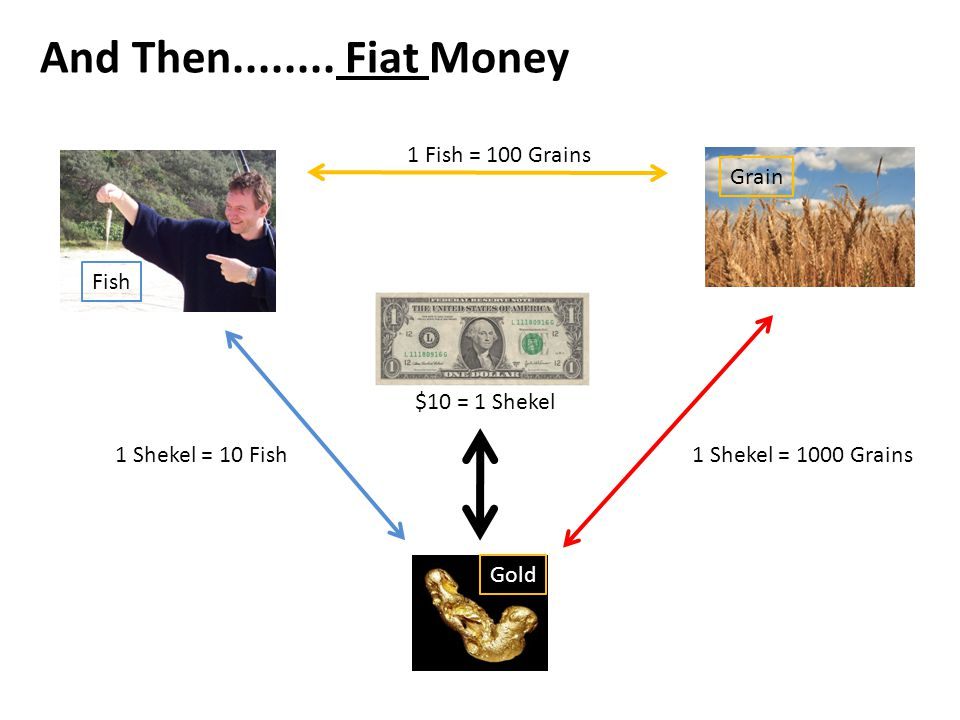 And Then........ Fiat Money 1 Fish = 100 Grains 1 Shekel = 1000 Grains1 Shekel = 10 Fish Fish Grain Gold $10 = 1 Shekel