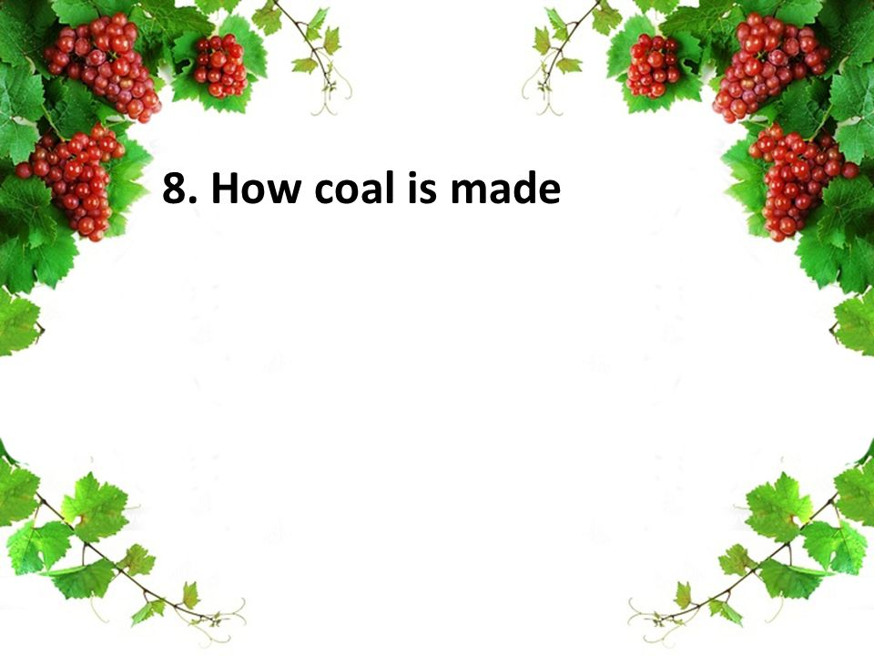 8. How coal is made