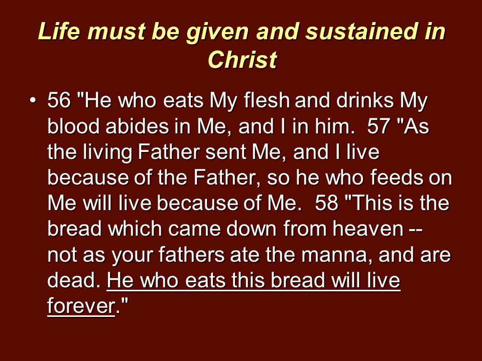 Life must be given and sustained in Christ 56