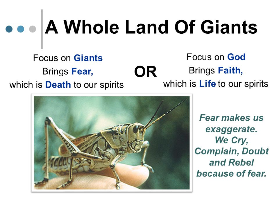 Focus on Giants Brings Fear, which is Death to our spirits Focus on God Brings Faith, which is Life to our spirits OR A Whole Land Of Giants Fear make