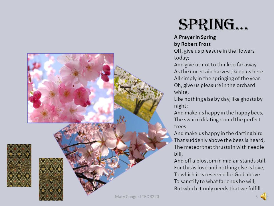 Spring… Mary Conger LTEC 32203 A Prayer in Spring by Robert Frost OH, give us pleasure in the flowers today; And give us not to think so far away As the uncertain harvest; keep us here All simply in the springing of the year.