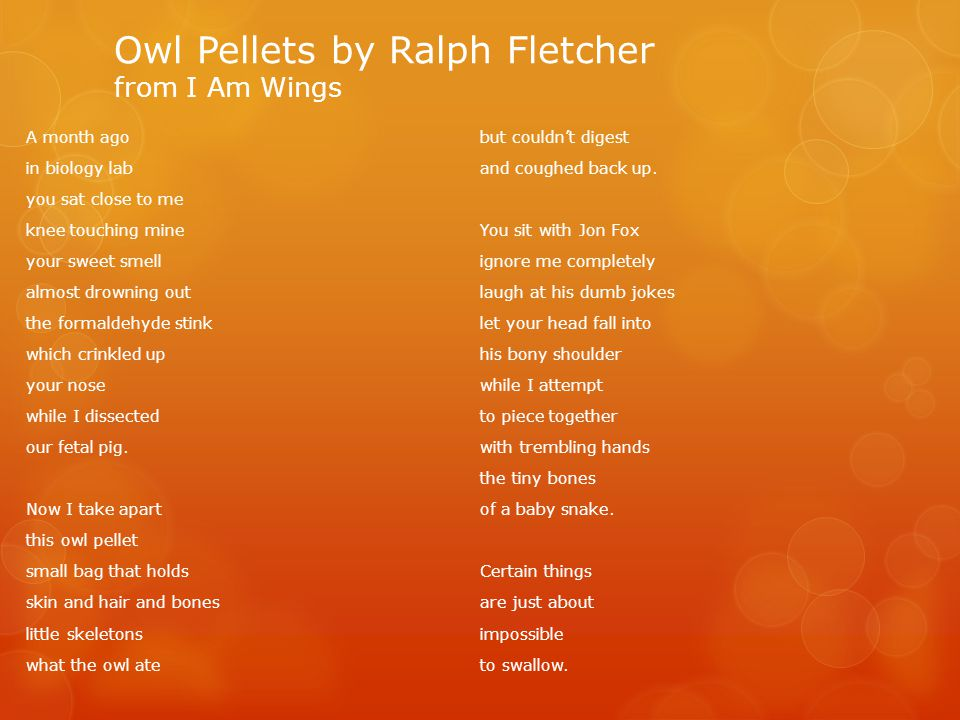 Owl Pellets by Ralph Fletcher from I Am Wings A month ago in biology lab you sat close to me knee touching mine your sweet smell almost drowning out the formaldehyde stink which crinkled up your nose while I dissected our fetal pig.