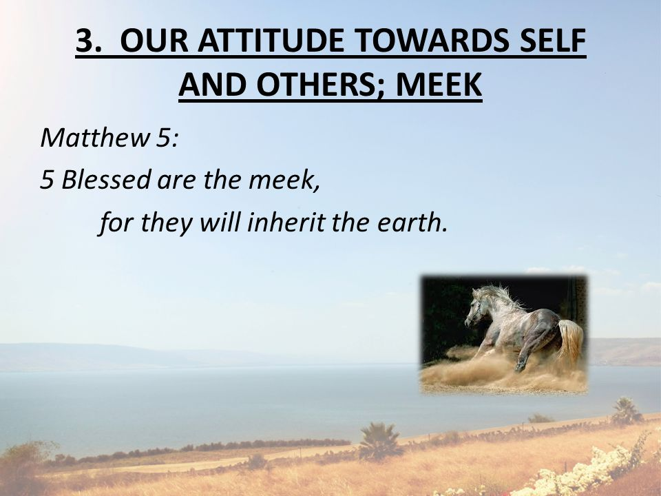 3. OUR ATTITUDE TOWARDS SELF AND OTHERS; MEEK Matthew 5: 5 Blessed are the meek, for they will inherit the earth.