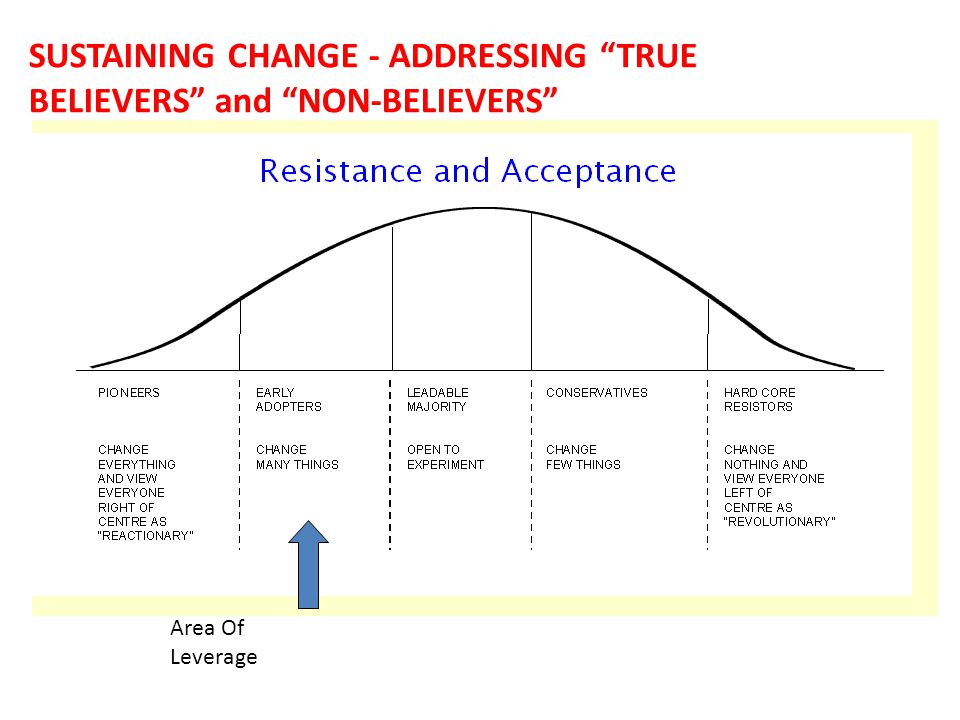 SUSTAINING CHANGE - ADDRESSING TRUE BELIEVERS and NON-BELIEVERS Area Of Leverage