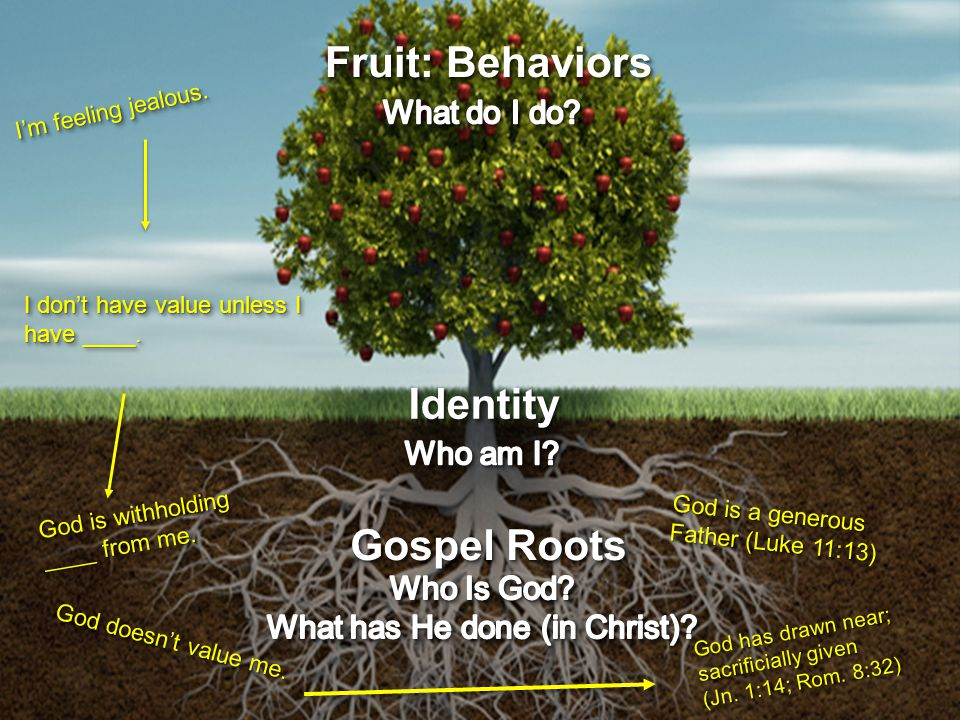 Fruit: Behaviors I'm feeling jealous. IdentityIdentity I don't have value unless I have ____.
