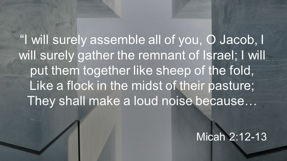 I will surely assemble all of you, O Jacob, I will surely gather the remnant of Israel; I will put them together like sheep of the fold, Like a flock in the midst of their pasture; They shall make a loud noise because… Micah 2:12-13