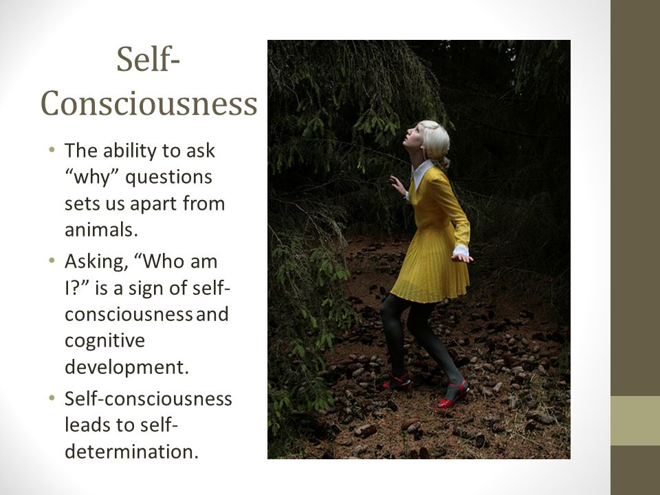 Self- Consciousness The ability to ask why questions sets us apart from animals.