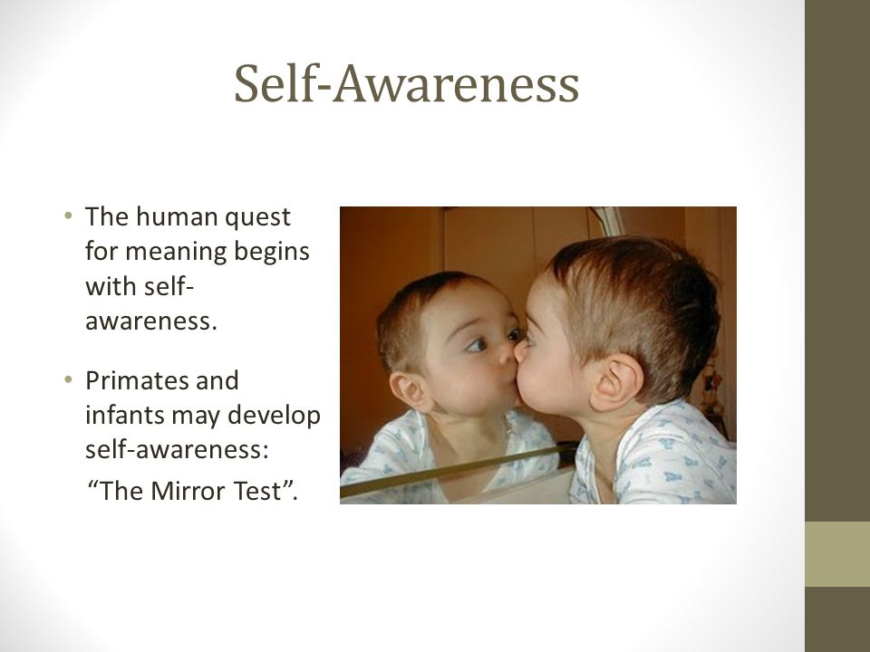 Self-Awareness The human quest for meaning begins with self- awareness.