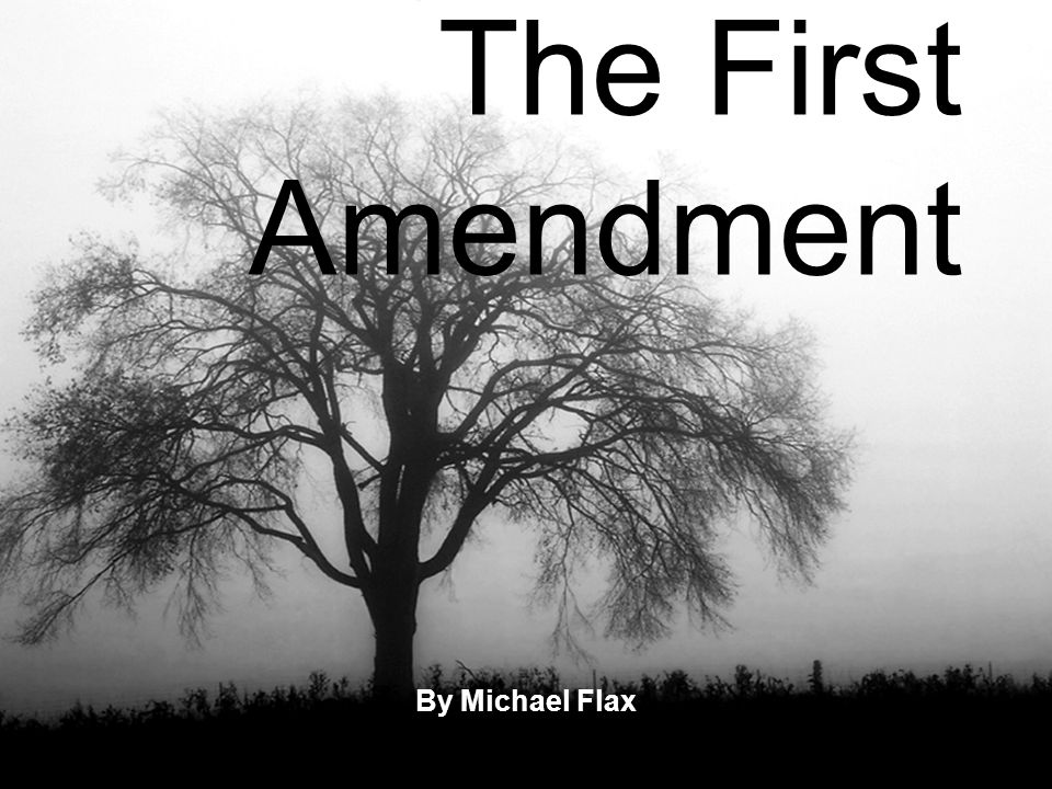 The First Amendment By Michael Flax