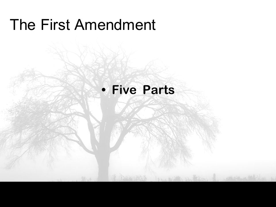 The First Amendment Five Parts