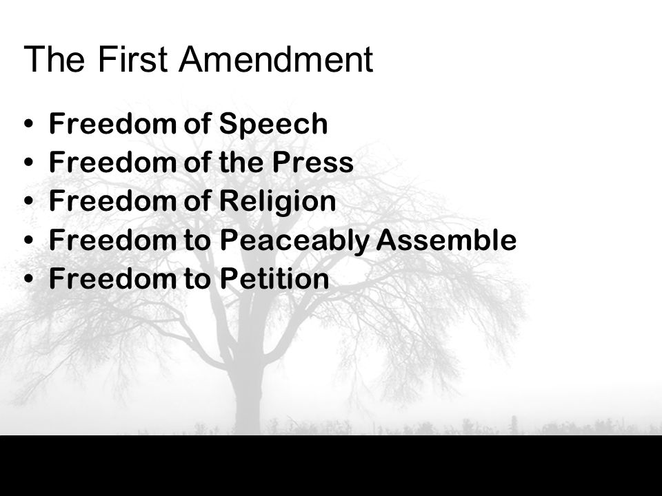 The First Amendment Freedom of Speech Freedom of the Press Freedom of Religion Freedom to Peaceably Assemble Freedom to Petition
