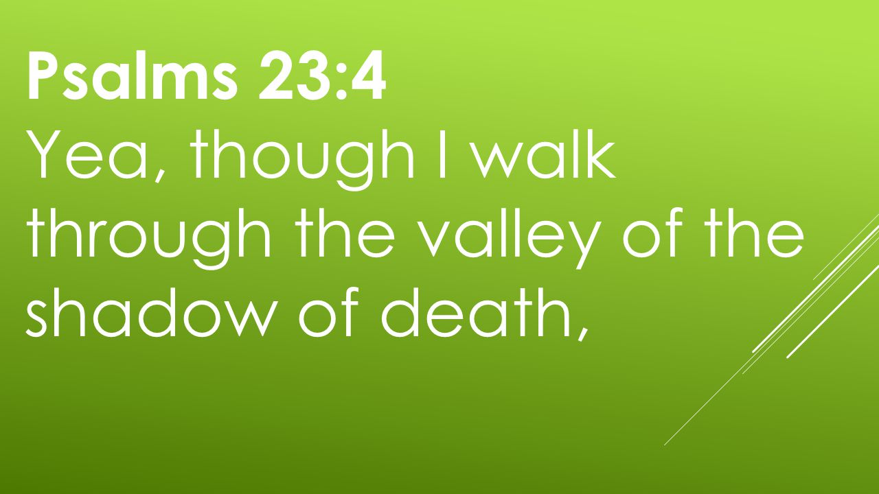 Psalms 23:4 Yea, though I walk through the valley of the shadow of death,