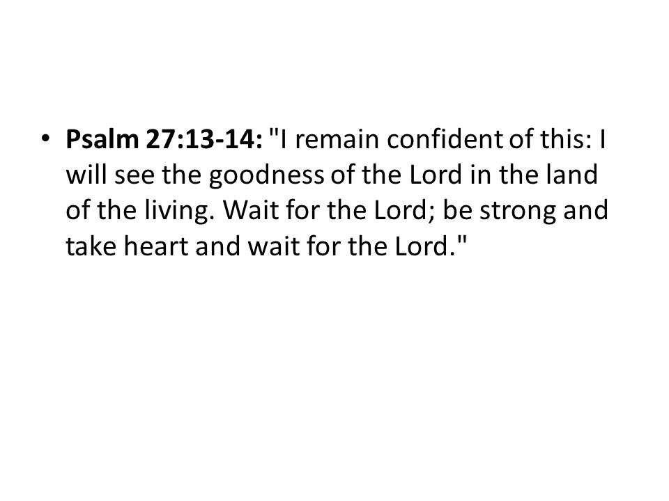 Psalm 27:13-14: I remain confident of this: I will see the goodness of the Lord in the land of the living.