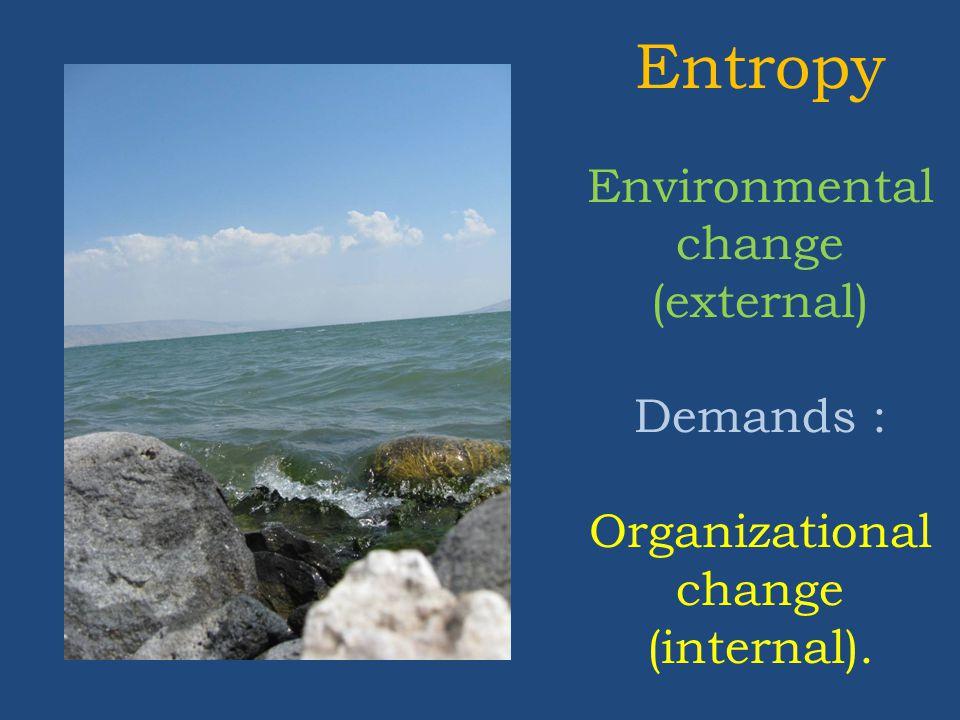 Entropy Environmental change (external) Demands : Organizational change (internal).