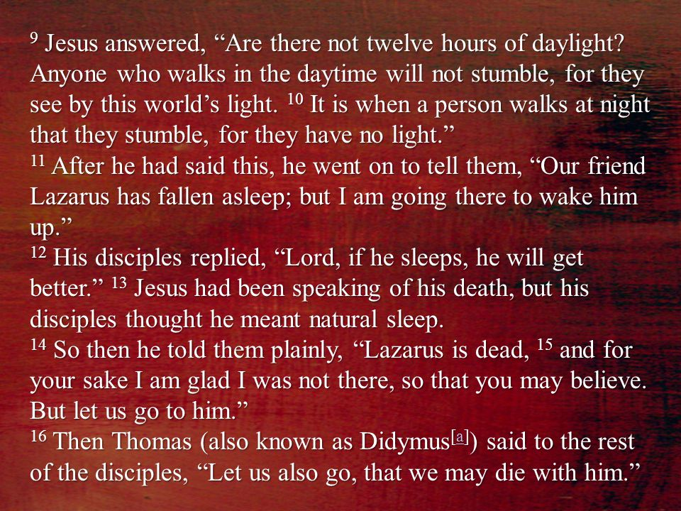 "9 Jesus answered, ""Are there not twelve hours of daylight? Anyone who walks in the daytime will not stumble, for they see by this world's light. 10 It"