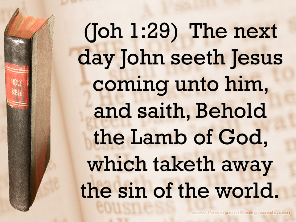 (Joh 1:29) The next day John seeth Jesus coming unto him, and saith, Behold the Lamb of God, which taketh away the sin of the world.