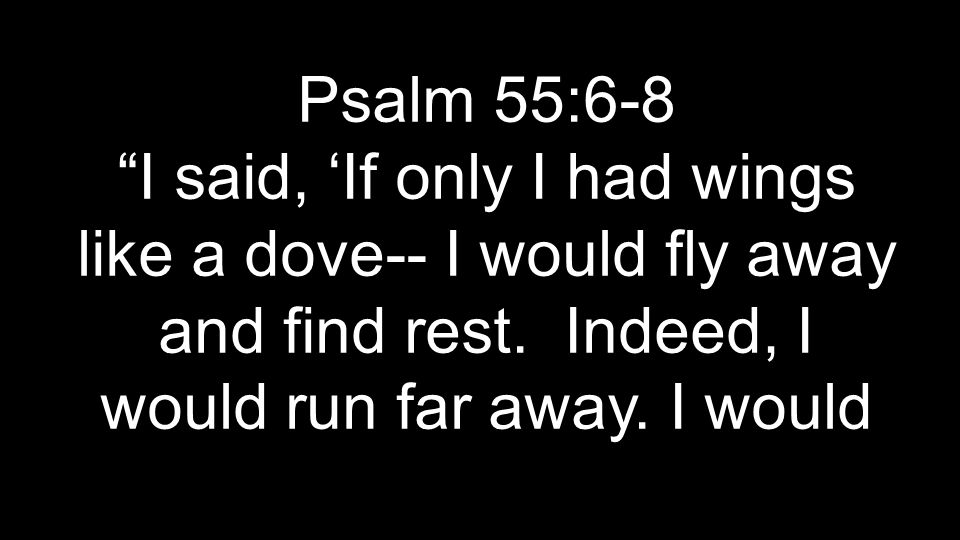 Psalm 55:6-8 I said, 'If only I had wings like a dove-- I would fly away and find rest.