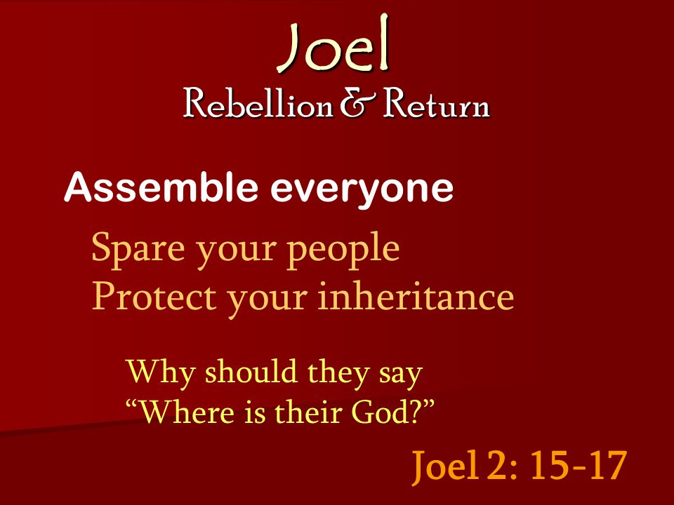 Joel Rebellion & Return Joel 2: 15-17 Assemble everyone Spare your people Protect your inheritance Why should they say Where is their God