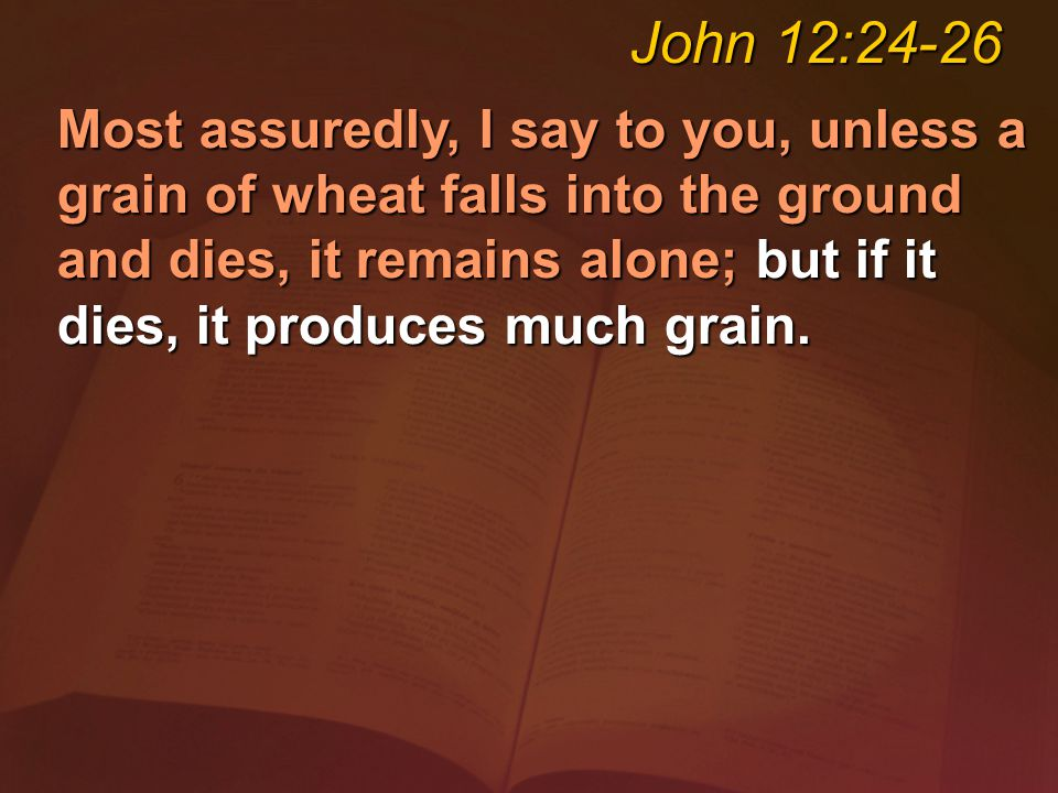 Most assuredly, I say to you, unless a grain of wheat falls into the ground and dies, it remains alone; but if it dies, it produces much grain.