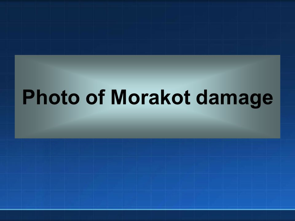 Photo of Morakot damage
