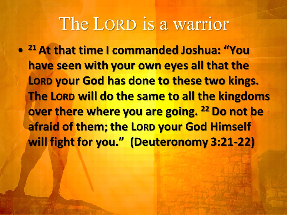 The L ORD is a warrior 21 At that time I commanded Joshua: You have seen with your own eyes all that the L ORD your God has done to these two kings.