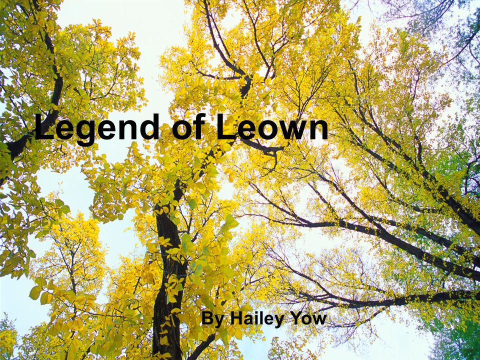 Legend of Leown By Hailey Yow