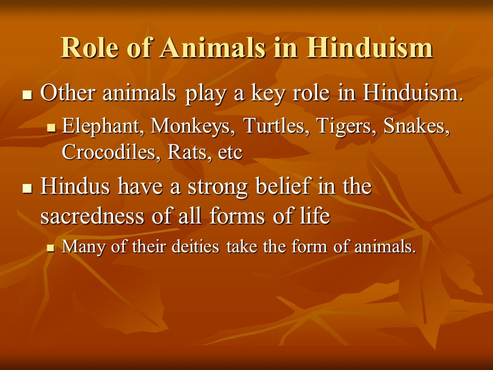 Role of Animals in Hinduism Other animals play a key role in Hinduism.