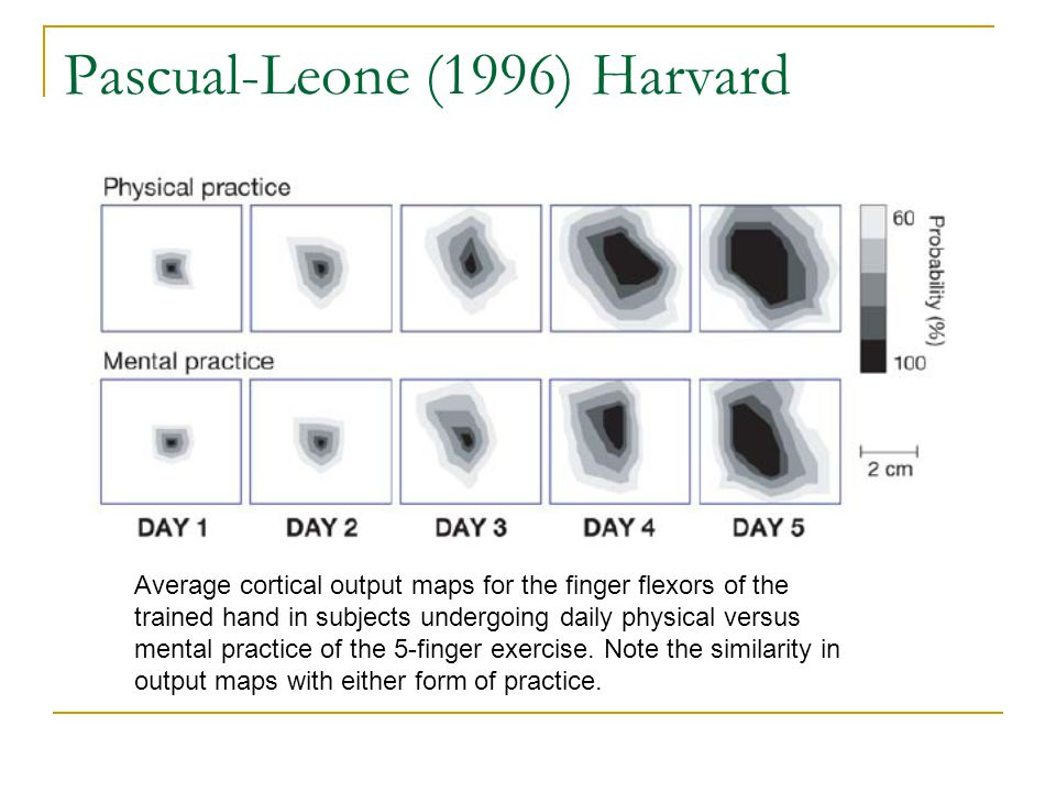 Pascual-Leone (1996) Harvard Average cortical output maps for the finger flexors of the trained hand in subjects undergoing daily physical versus mental practice of the 5-finger exercise.