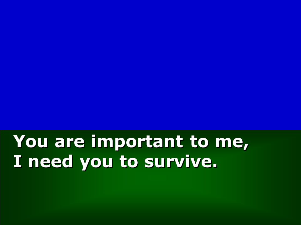 You are important to me, I need you to survive.