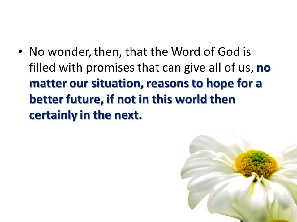 no matter our situation, reasons to hope for a better future, if not in this world then certainly in the next. No wonder, then, that the Word of God i